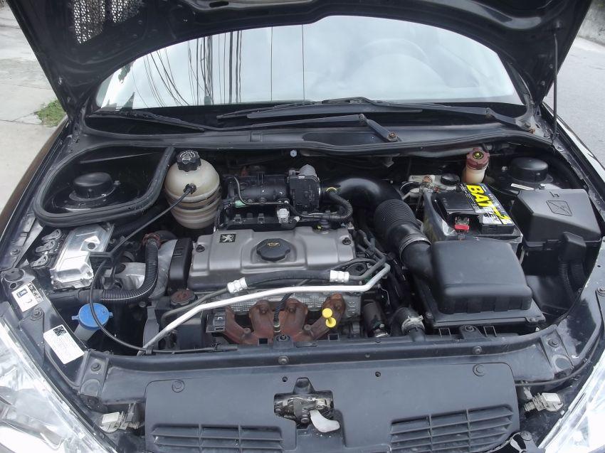 Peugeot 206 Hatch. Presence 1.4 8V (flex) 2p - Foto #10