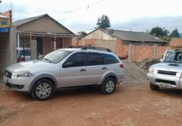 Fiat Palio Weekend Trekking 1.8 8V (Flex)