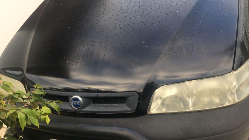 Fiat Palio Weekend Adventure 1.8 8V - Foto #3