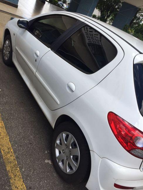 Peugeot 207 Hatch Blue Lion 1.4 (Flex) - Foto #5