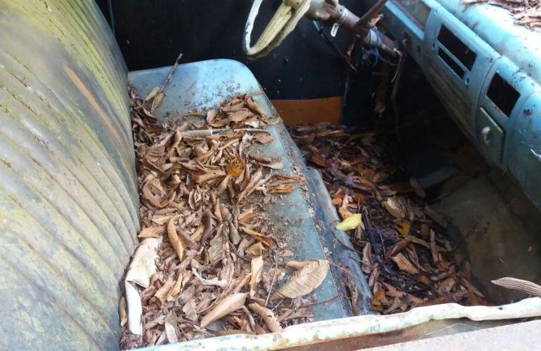 Dodge Dart V8 - Foto #1