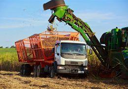 Volvo otimiza caminhão VM para operação de transbordo de cana-de-açúcar