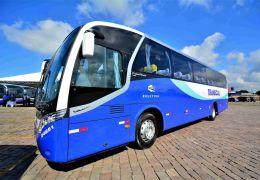 Iveco Bus comemora crescimento das vendas de ônibus no mercado nacional