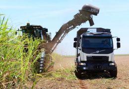Caminhão criado por brasileiros anda sozinho e reduz perdas nas plantações