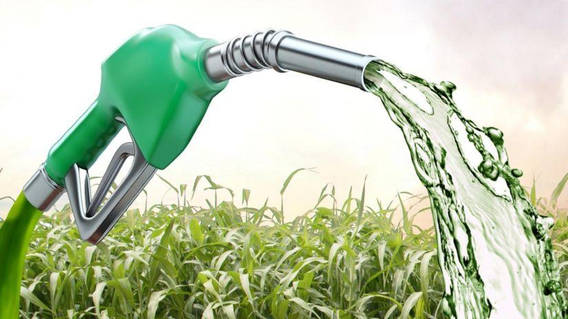 Etanol é 75,4% mais eficiente do que gasolina