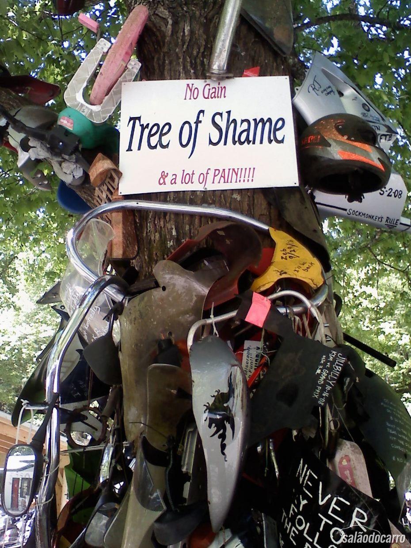 Árvore da Vergonha