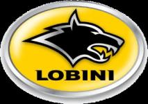 Logo Lobini