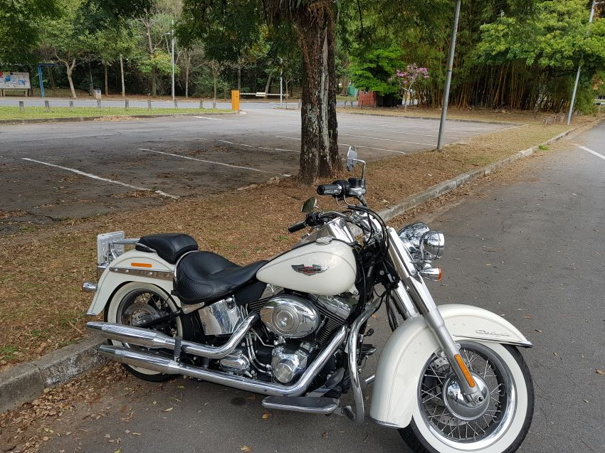 Harley-Davidson Softail De Luxe - Foto #3