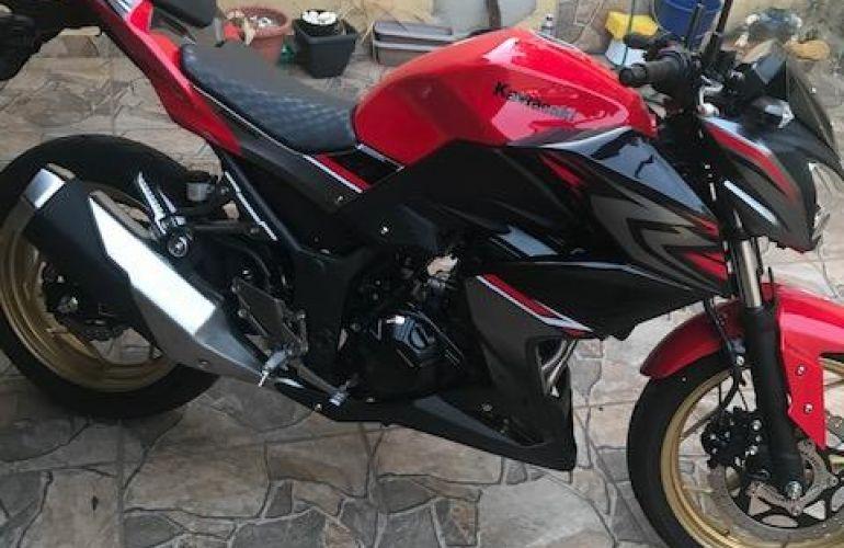 Kawasaki Z 300 (ABS) - Foto #2