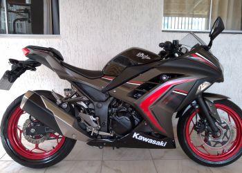 Kawasaki Ninja 300 (ABS)