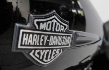 Harley-Davidson Dyna Fat Bob - Foto #9
