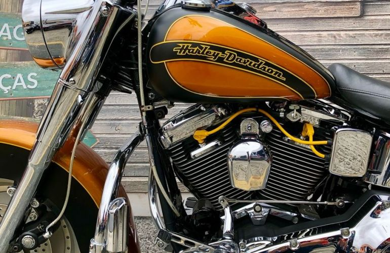 Harley-Davidson Heritage Softail Classic - Foto #10