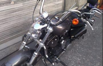 Harley-Davidson Sportster 1200 Custom Cb Limited - Foto #9