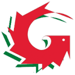 Logo Garinni